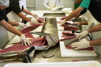 Некоторые виды рыбы и морепродуктов содержат повышенное содержание ртути