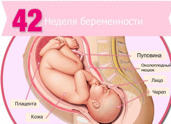 42 неделя беременности: что происходит, полезные советы