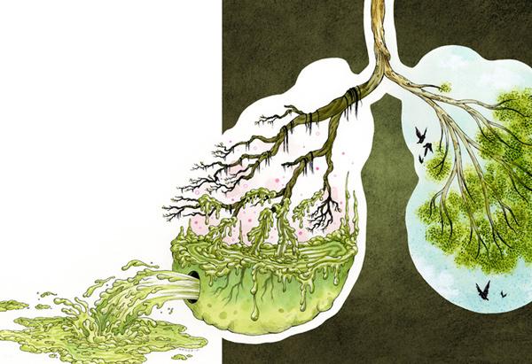 Очищение организма: как правильно провести детоксикацию организма