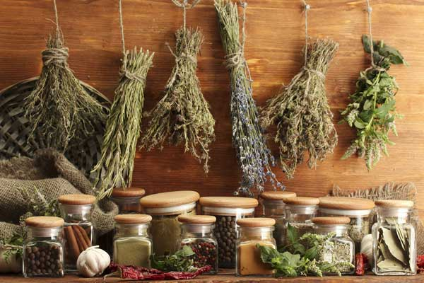 Лучшие растения и специи в народной медицине