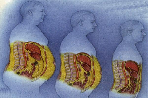как убрать жир внутри организма