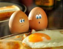 2-3 яйца в день