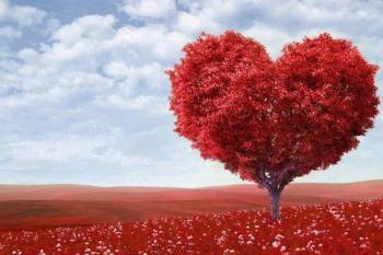 Новое сердце из стволовых клеток