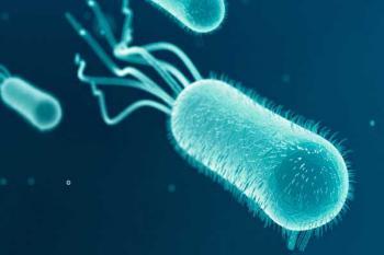 Супербактерия E.coli