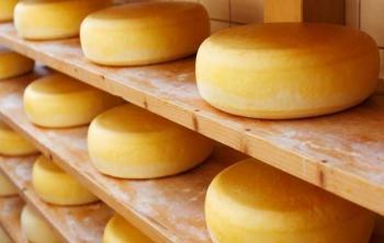 Употребление сыра снижает риск гипертонии