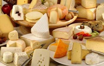 Лучшие сорта сыра