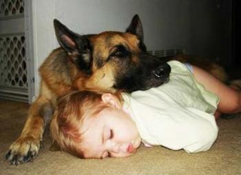 Детская астма: сон с животным снижает риск заболевания