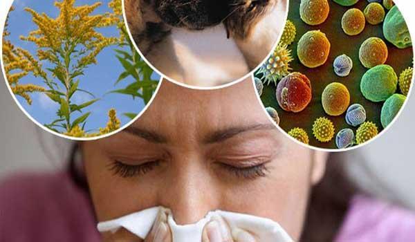 Календарь цветения - когда опасна пыльца