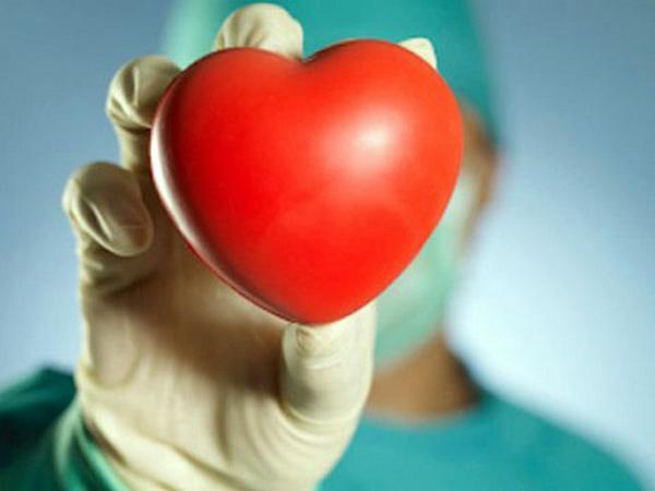 Пересадка сердца (трансплантация сердца)