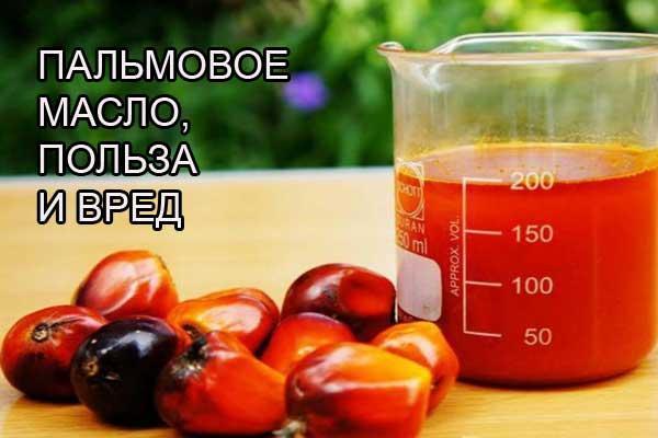Вся правда про пальмовое масло