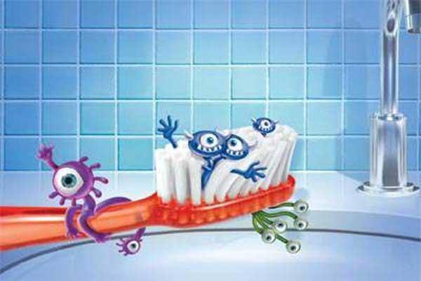 Щетина зубной щетки содержит множество бактерий
