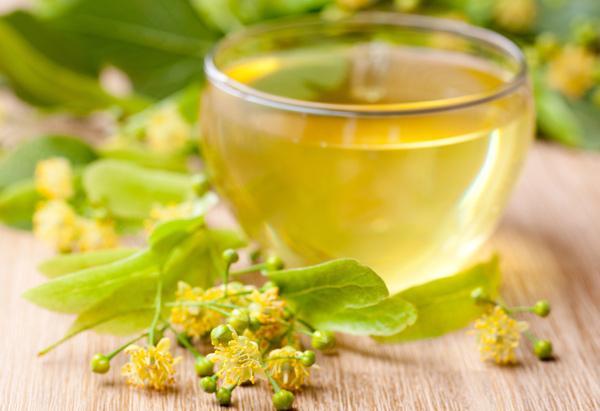 Липовый чай: применение и полезные свойства