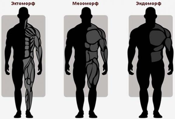 как нарастить мышцы и сжечь жир одновременно