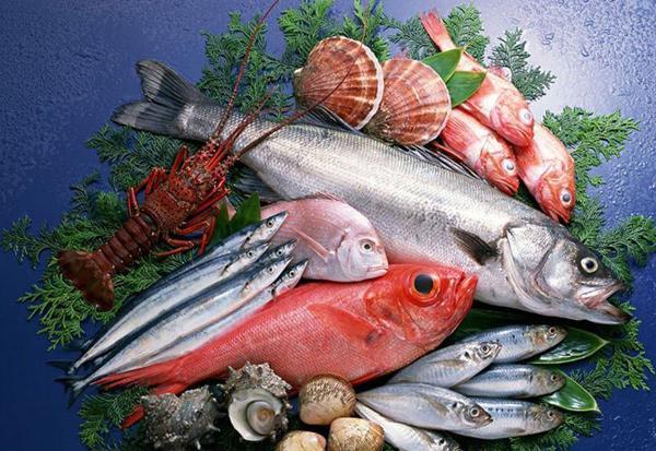Польза рыбы в диетическом питании