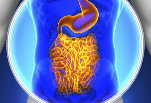Гастроэнтерологическая операция: описание и риски