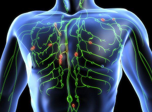 Лимфаденэктомия: цель, описание