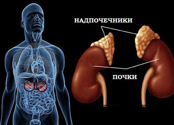 Адреналэктомия: операция по удалению надпочечников
