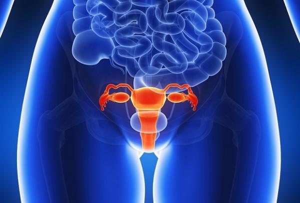 вагинит у женщин