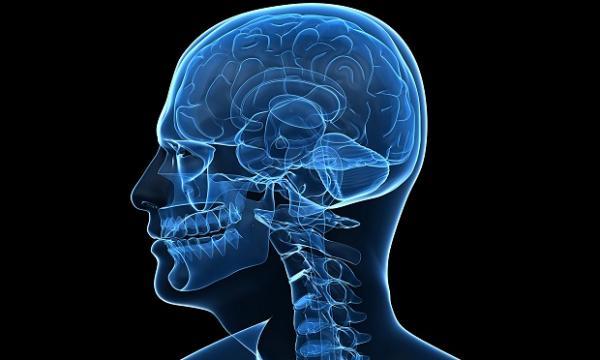 Энцефалит мозга