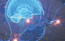 Рассеянный склероз влияет на центральную нервную систему