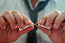 Броисть курить полезно в любом возрасте