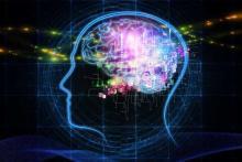 Нейроны в мозгу