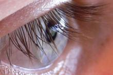 идеальная длина глаз