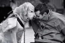 Дружба человека с собакой вызвана гормоном окситоцин