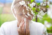 девушка чихает в ответ на пыльцу деревьев