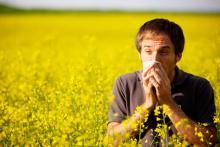 Аллергия во время праздников и отпуска