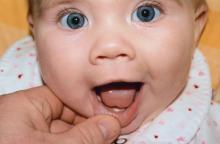 когда появляются молочные зубы у детей