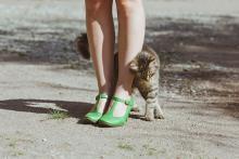 Почему кошки трутся о ноги и предметы