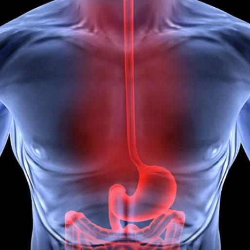 Отрыжка после еды происходит из желудка и пищевода